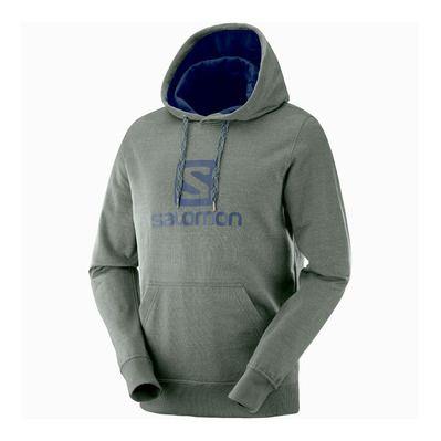 https://static.privatesportshop.com/1927972-6110674-thickbox/salomon-logo-sweat-homme-urban-chic.jpg