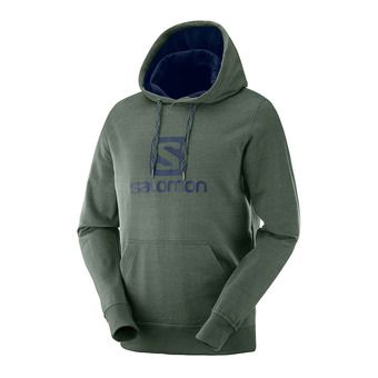 Salomon LOGO HOODIE - Sweat Homme green gab