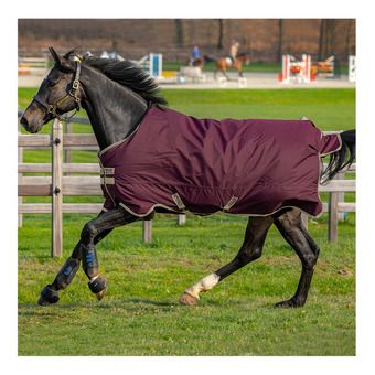 Horseware AMIGO HERO RIPSTOP + 100G - Couverture de paddock fig/navy/tan