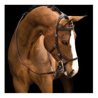 Horseware RAMBO MICKLEM - Bridon dark havana