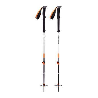 Black Diamond EXPEDITION 2 - Ski Poles