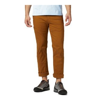 Mountain Hardwear AP - Pants - Men's - golden brown