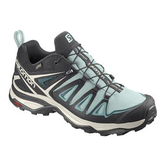 Shoes X ULTRA 3 GTX W Icy Morn/Meadowbro Femme Icy Morn/Meadowbro