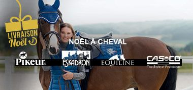 NOEL A CHEVAL