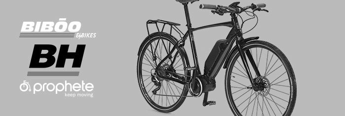 ELECTRIC BIKE SPECIAL
