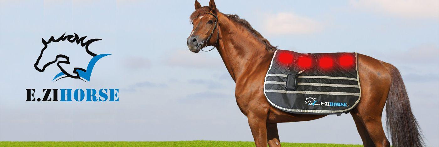 EZI HORSE en vente flash sur PRIVATESPORTSHOP